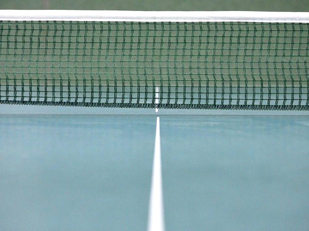 Tischtennis Netz Tischtennisplatte