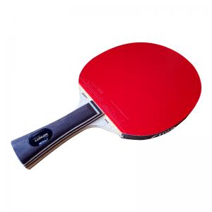 Tischtennisschläger Infinity ARC